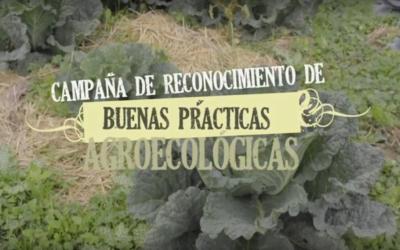 """Serie documental """"Buenas prácticas agroecológicas"""". Presentación de la 1° campaña de Reconocimiento de la Comunidad de Madrid"""